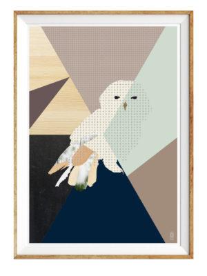 7_snowowl